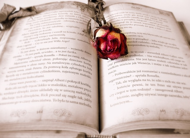 Diferencias entre novela y cuento