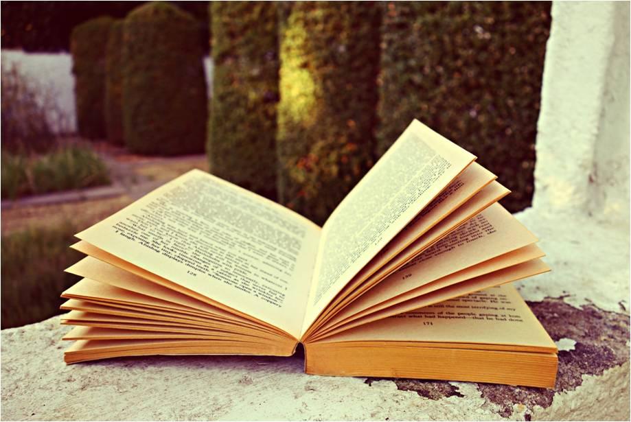 Diferencias entre el verso y la prosa