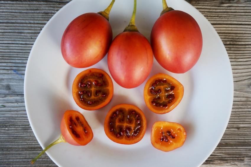 Diferencias entre lulo y tomate de árbol
