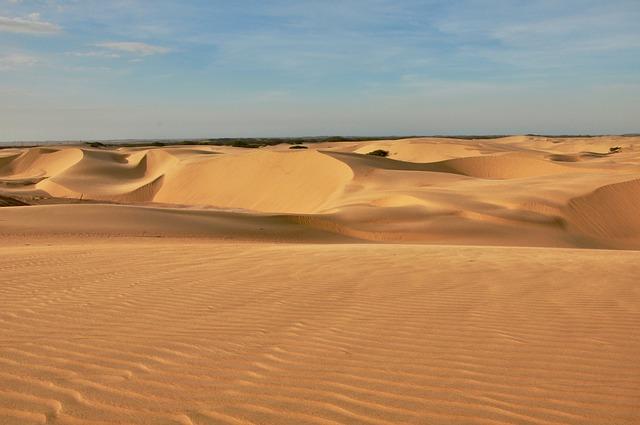 Diferencias entre tierra negra y arena